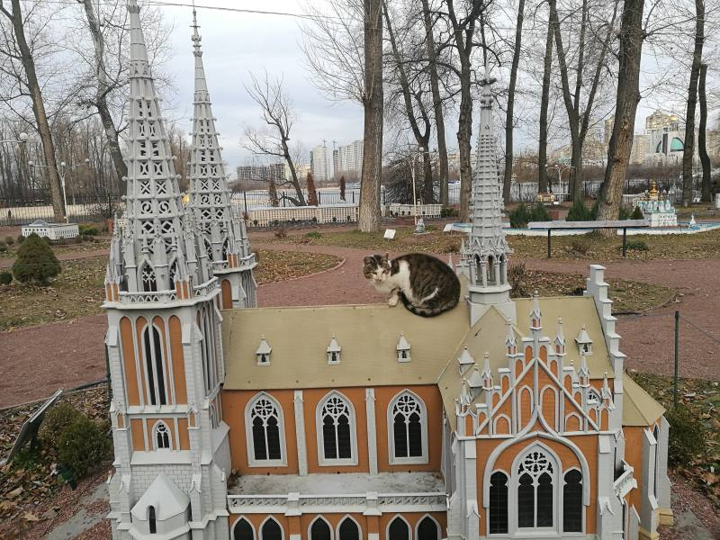 Η γάτα είναι τεράστια ή το κτίριο μινιατούρα;